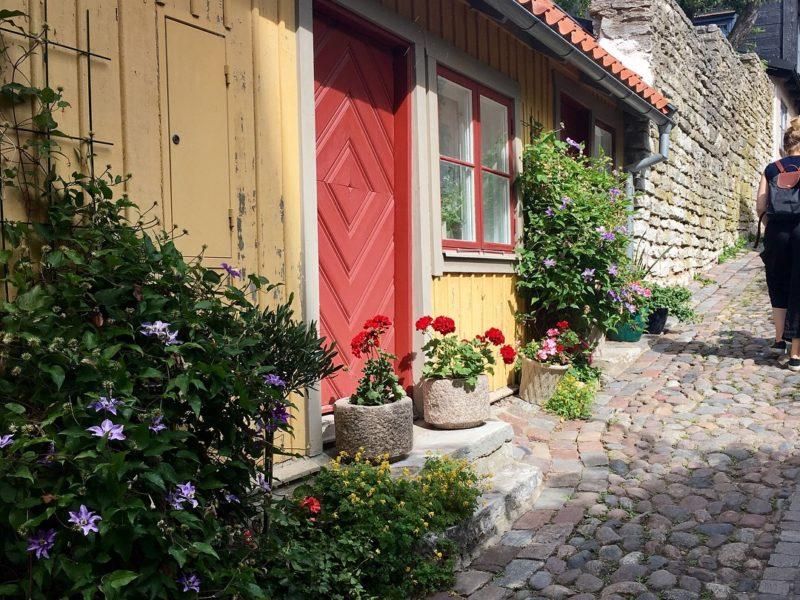 Språkbad på Gotland -kesälukiossa vapautui kaksi paikkaa